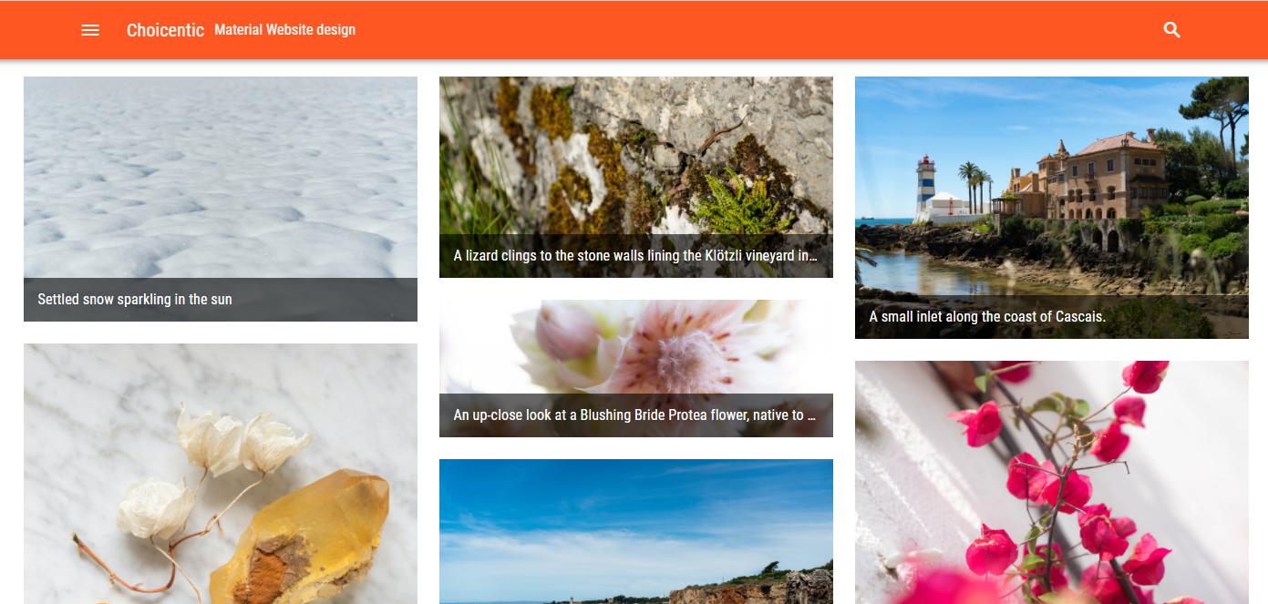 Material design website in Wordpress